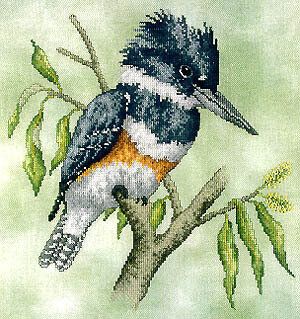Belted Kingfisher - Cross Stitch Pattern