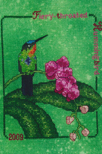 Fiery Throated Hummingbird (2009) - Cross Stitch Pattern