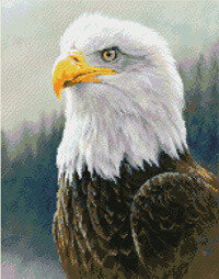 Bald Eagle - Cross Stitch Pattern
