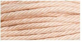 DMC Soft Matte Cotton Thread - 2950 Light Desert Brown