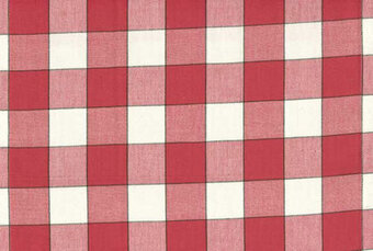 "Red Buffalo Check 16"" x 18"" Toweling Fabric"