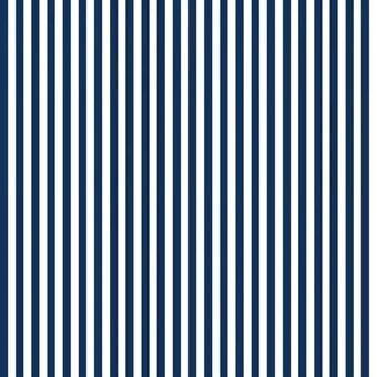 "Riley Blake 1/4"" Stripes Navy Fabric Half Yard"