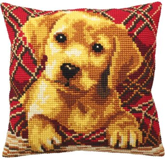 Brady - Stamped Needlepoint Cushion Kit