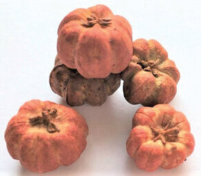 Pumpkins - 6 Pieces - Dollhouse Miniature