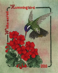 White-eared Hummingbird - Cross Stitch Pattern