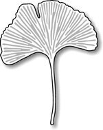 Gingko Leaf - Impression Obsession Craft Die