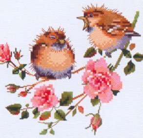Rose Chick Chat - Cross Stitch Pattern
