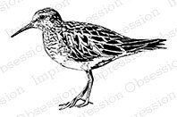 Sandpiper - Cling Rubber Stamp