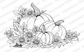 Fall Pumpkins - Cling Stamp