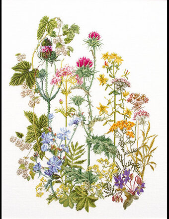 Wild Flowers Cross Stitch Kit