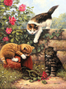 Kittens At Play - Paint By Number Kit