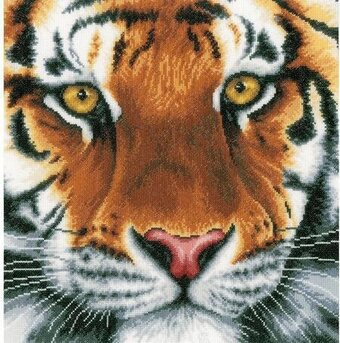 Tiger On Aida - Cross Stitch Kit