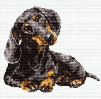 Dachshund - Cross Stitch Kit