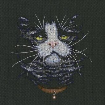 Cat's Favourite - Cross Stitch Kit