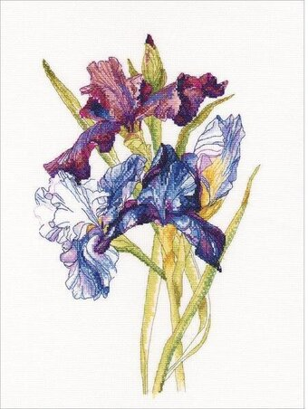 Irises Rainbow - Cross Stitch Kit