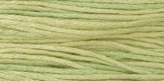 Weeks Dye Works - Butter Bean #1189