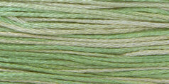 Cactus - Weeks Dye Works Pearl Cotton #5