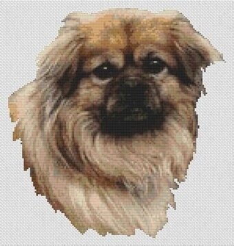 Tibetan Spaniel - Fawn - Cross Stitch Pattern