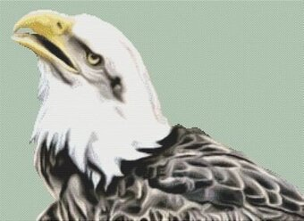 Bald Eagle 3 - Cross Stitch Pattern