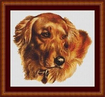 Amber - Cross Stitch Pattern