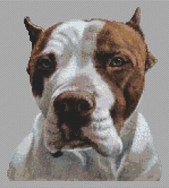 American Pit Bull Terrier - Cross Stitch Pattern