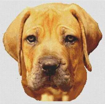 Boerboel - Cross Stitch Pattern