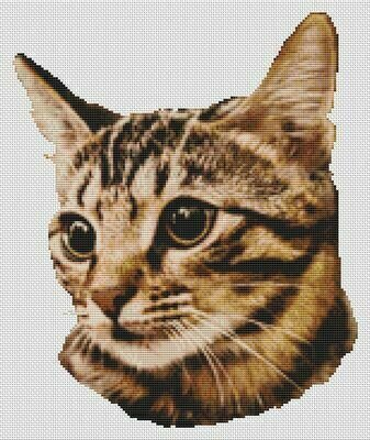 Tigerrr - Cross Stitch Pattern