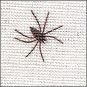 28 Count Black Spiders On White/Silver Linen Fabric 19x35