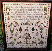 Mary Cook 1795 - Cross Stitch Pattern