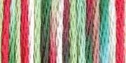 Color Variations Pearl Cotton Size 5 DMC Floss #4042