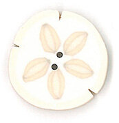 Small Sand Dollar - Button