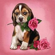 Pure Rose - Valentine's Day Diamond Embroidery Kit