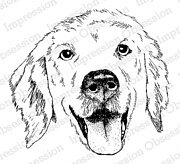 Golden Retriever - Cling Stamp