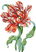 Striped Parrot Tulip - Cross Stitch Pattern