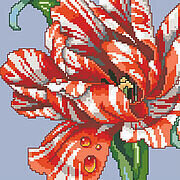 Striped Parrot Tulip Big Stitch - Cross Stitch Pattern