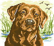 Labrador Big Stitch - Cross Stitch Pattern