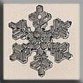 Mill Hill 12037 Medium Snowflake - Crystal