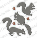 Impression Obsession Squirrel Die Set