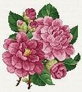 Pink Peonies - Cross Stitch Pattern