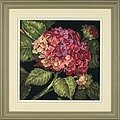 Hydrangea Bloom - Needlepoint Kit