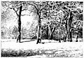 Snowy Park - Rubber Stamp