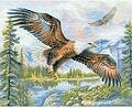 Free Fall Eagle - Cross Stitch Kit